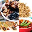 Храната основен източник на здравословен живот
