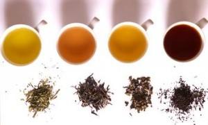 История на чая производство и видове чай