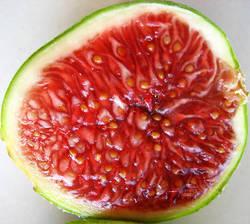 Смокиня – естествен източник на калии , глюкоза и фруктоза