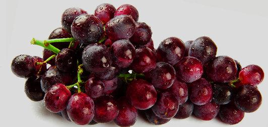 Сортове грозде за вино 2014